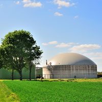 Anaerobic Digestion (AD) Plant Feed Stocks